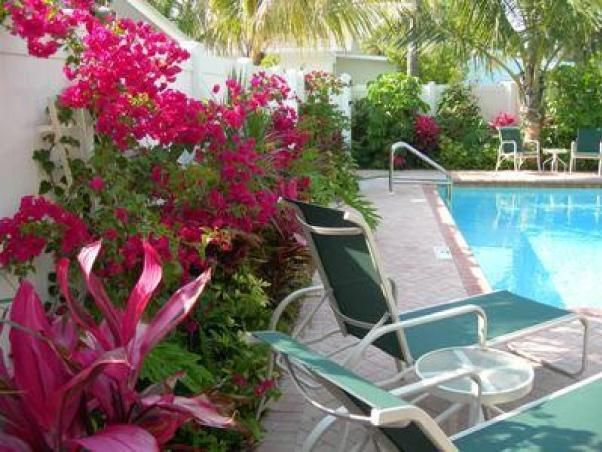 A lush tropical setting for relaxing and enjoying the gulf breeze.