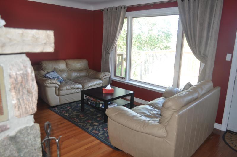 Nice Leather Furniture Living Room