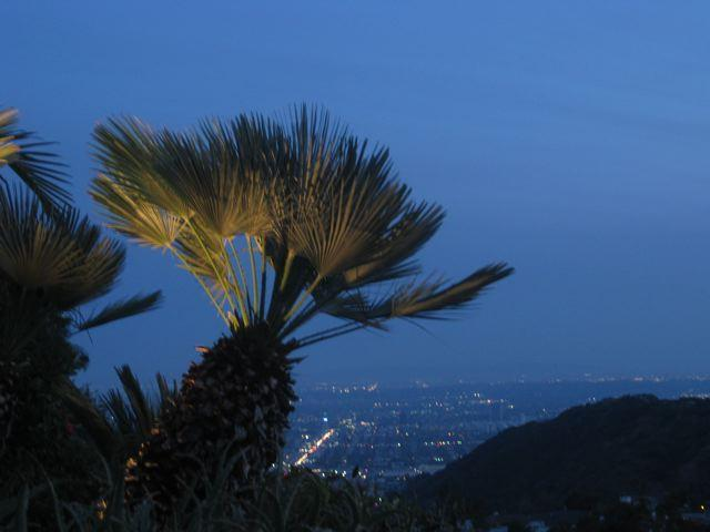 Night time view of Hollywood