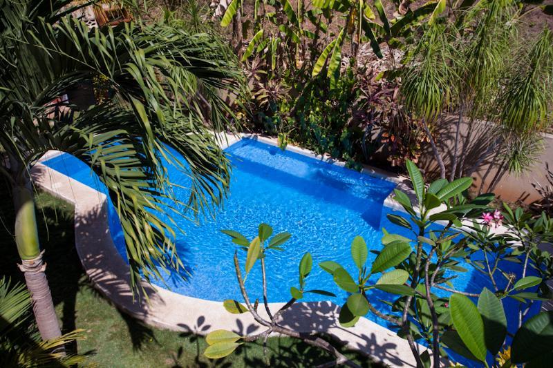 Gran piscina, con piscina y jardín