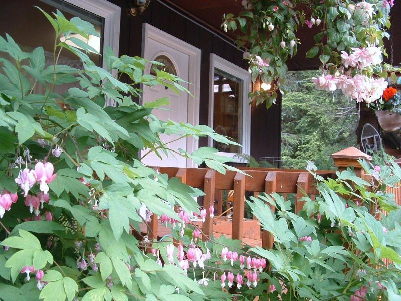 Summer front entrance