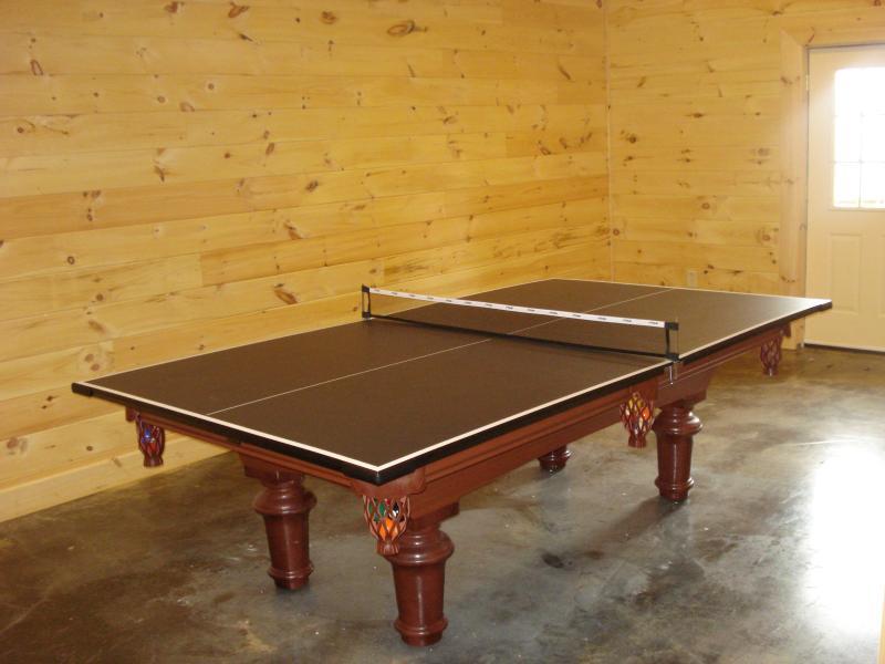 Biliardo ping pong