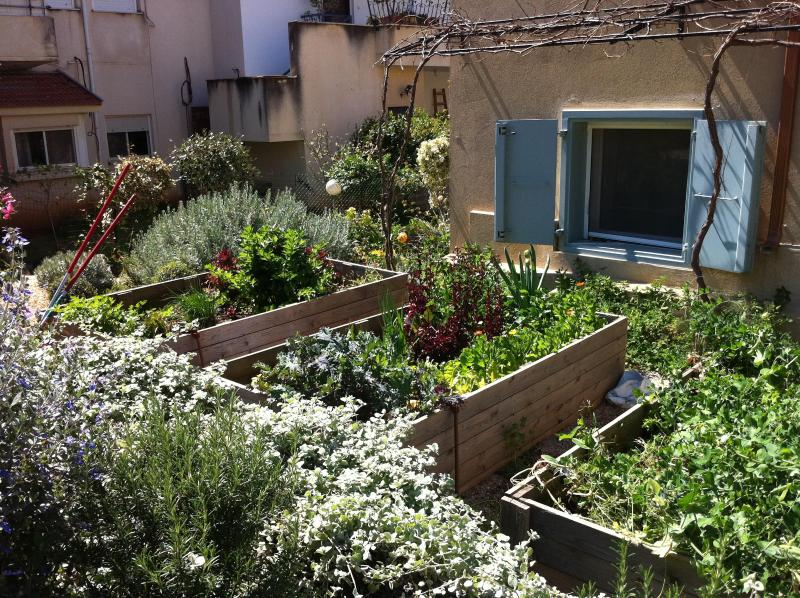 Organic vegetable boxes.  Help yourself to our produce!