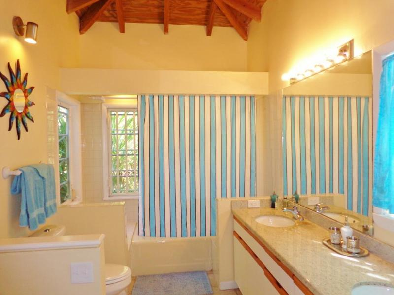 The spacious Master Bath has two sinks, a high ceiling, and a walk-in closet.