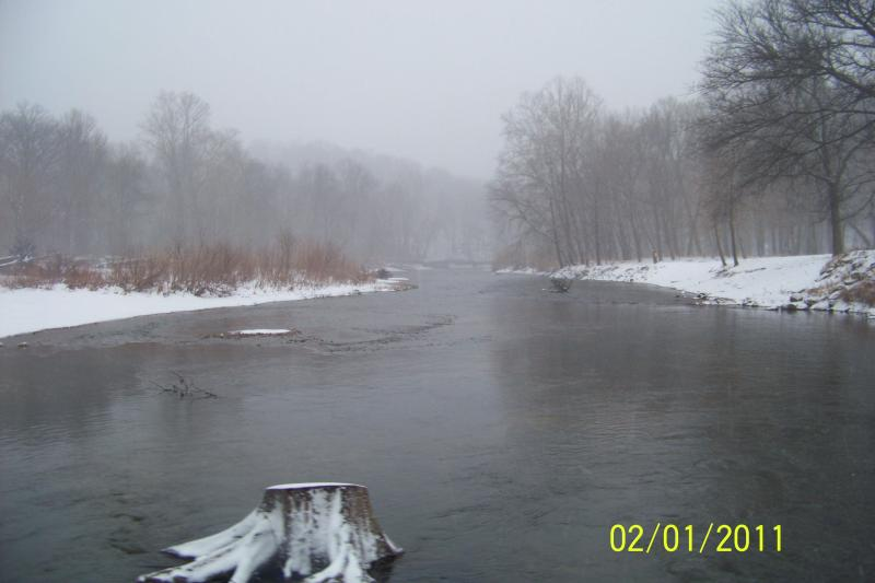 ec river near the cabin. A great place to sit and watch for Eagles