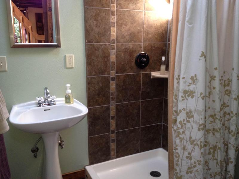 Badkamer met dakraam, volledige lengte spiegel, en dual flush toilet.