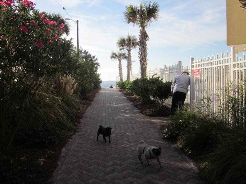 One of many paths to the beach