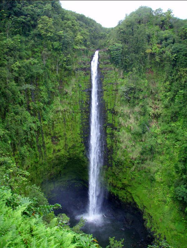 Akaka Falls - less than an hour away