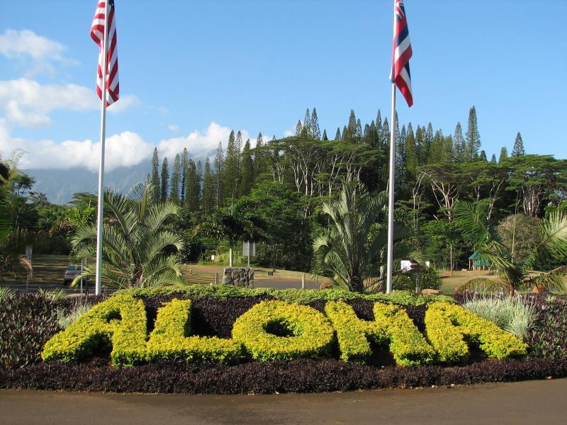 Mahalo y Aloha!