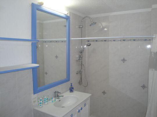 The downstairs full bathroom