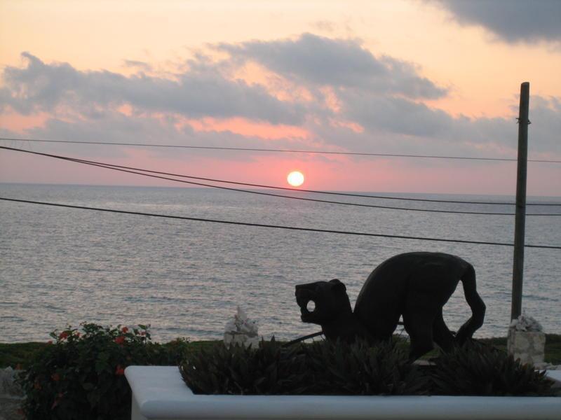 Salida del sol detrás de Jaguar