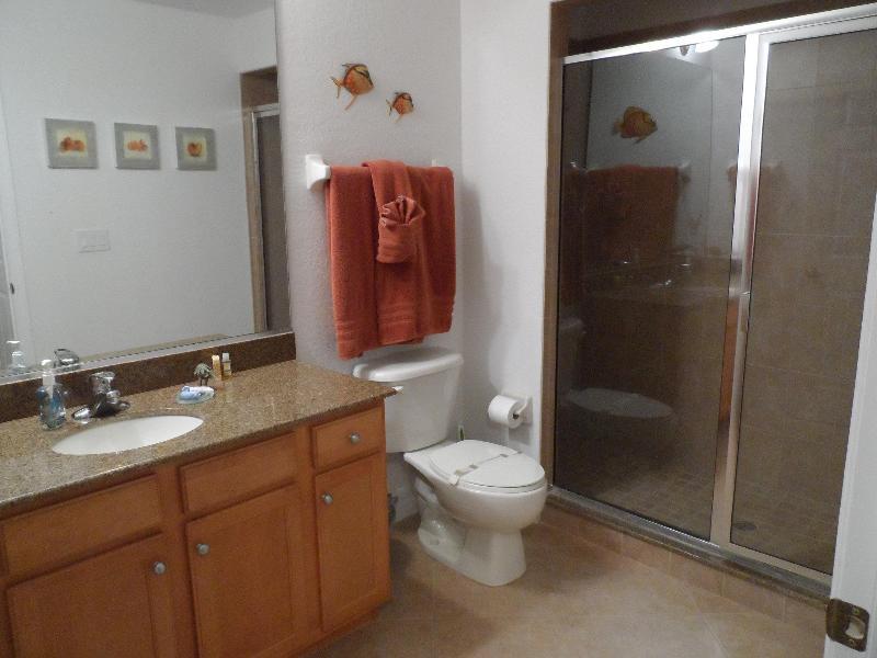 baño de visitas con ducha grande