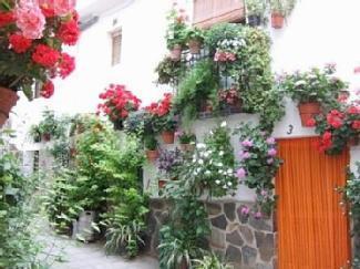 Local rua de paralelepípedos com varandas linda flor