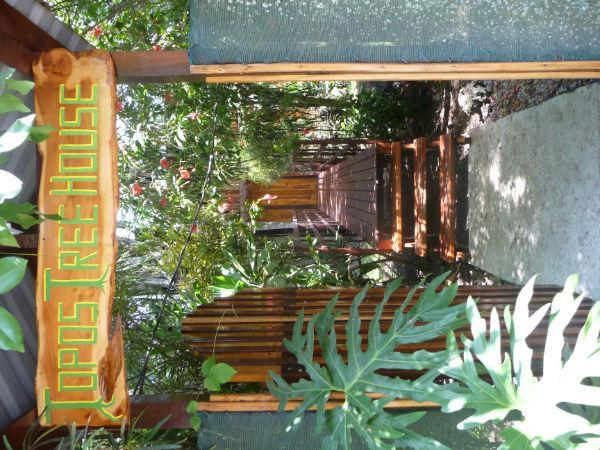 Entrance to the treehouse