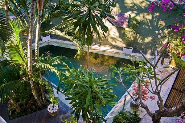 Delightfully fresh swimming pool with tropical trees protecting the water