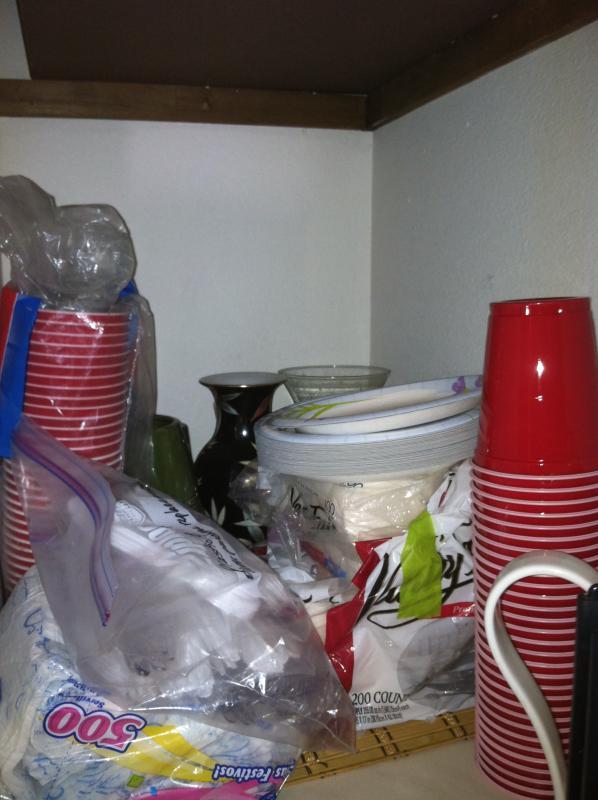 Paper & Plastic supplies for your picnics!