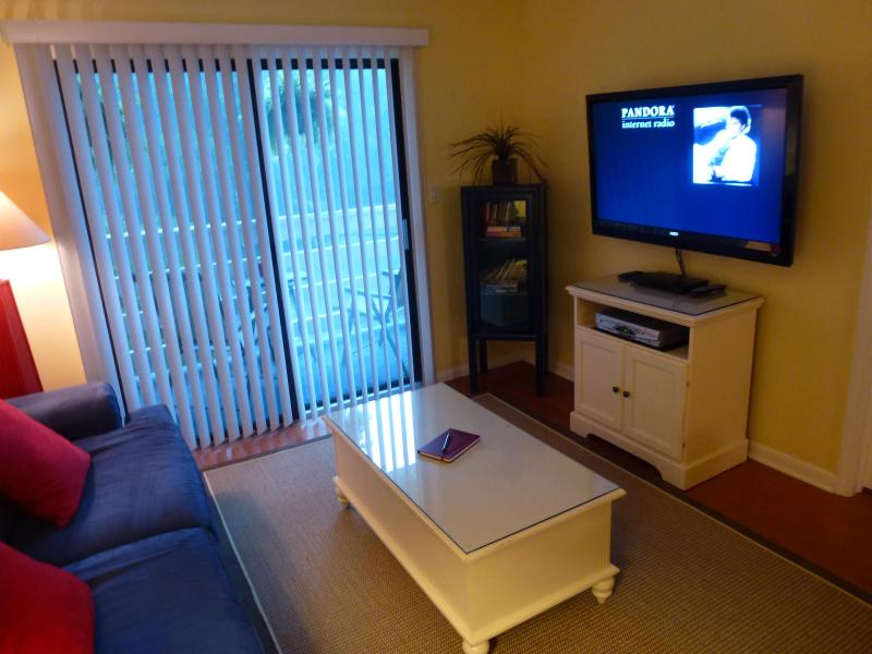 Video cabinet next to 47' HDTV