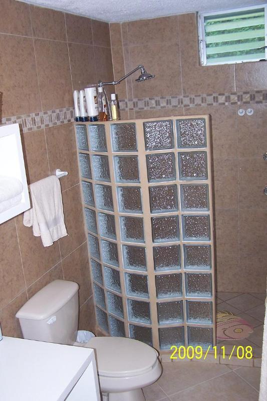 Bathroom  - just remodeled with walk in shower with lots of hot water.