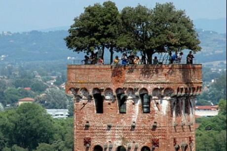 Palazzo della Stufa - vakantieappartementen in Lucca-