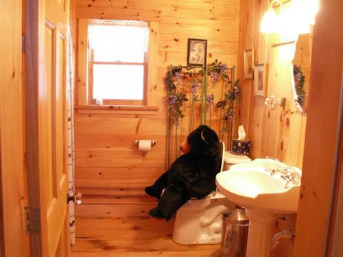 the bear in the 'East' cabin!