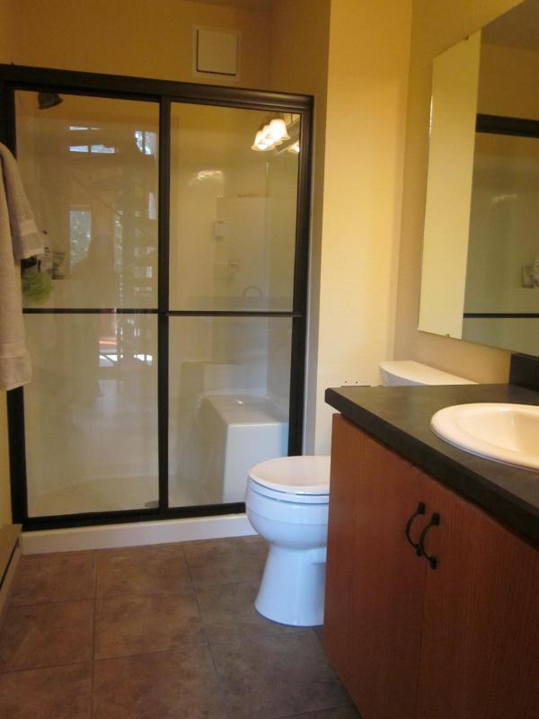 Bathroom on Main level with Really Nice Shower