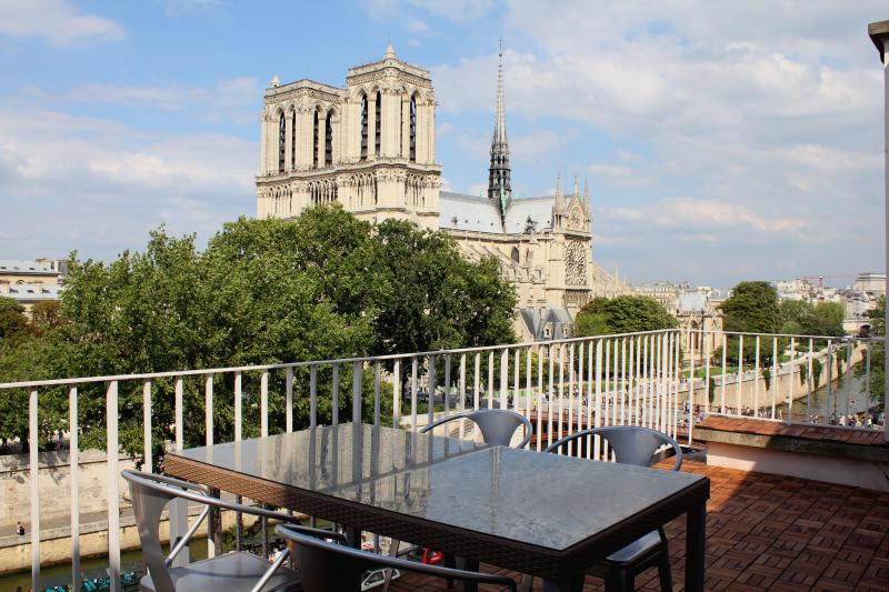 The amazing view of Notre Dame