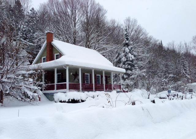 A perfect winter setting!