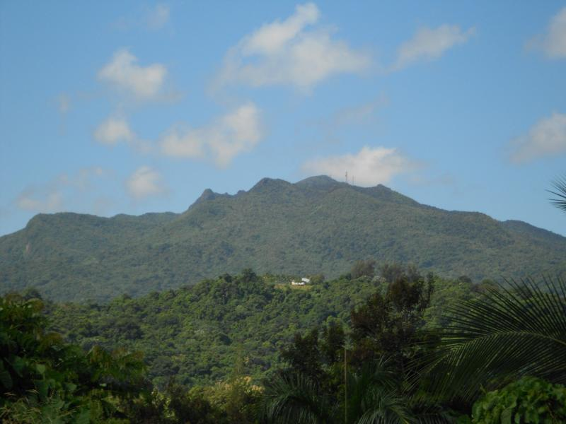 view of a el Yunque from the front side of the villa