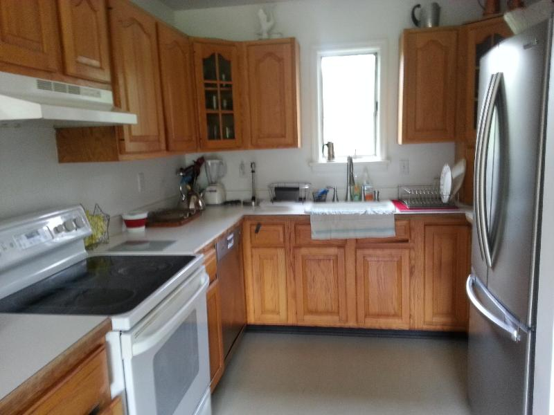 Great Kitchen with FREE Supplies