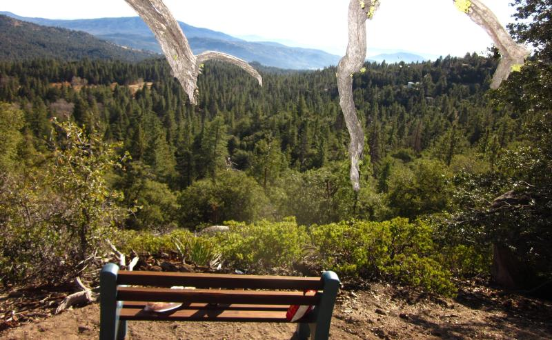 Private Bench with full valley view, at the back of our property, by the 'Hat Tree'