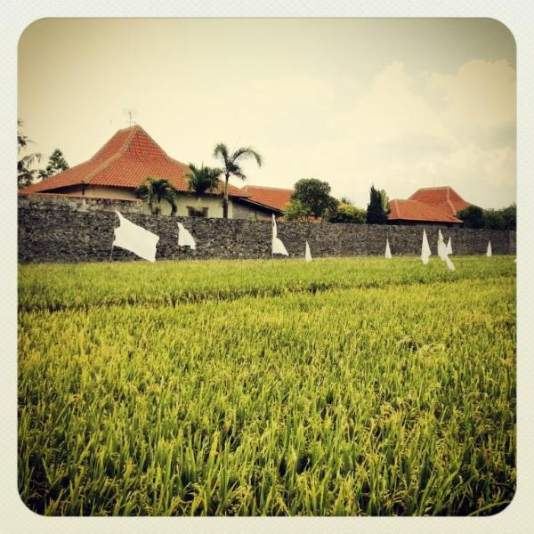 Villa AQUIN - Solo City, holiday rental in Solo