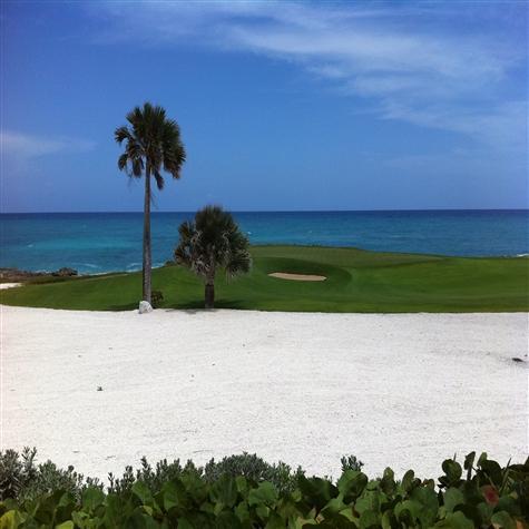Punta Espada Golf Cap Cana