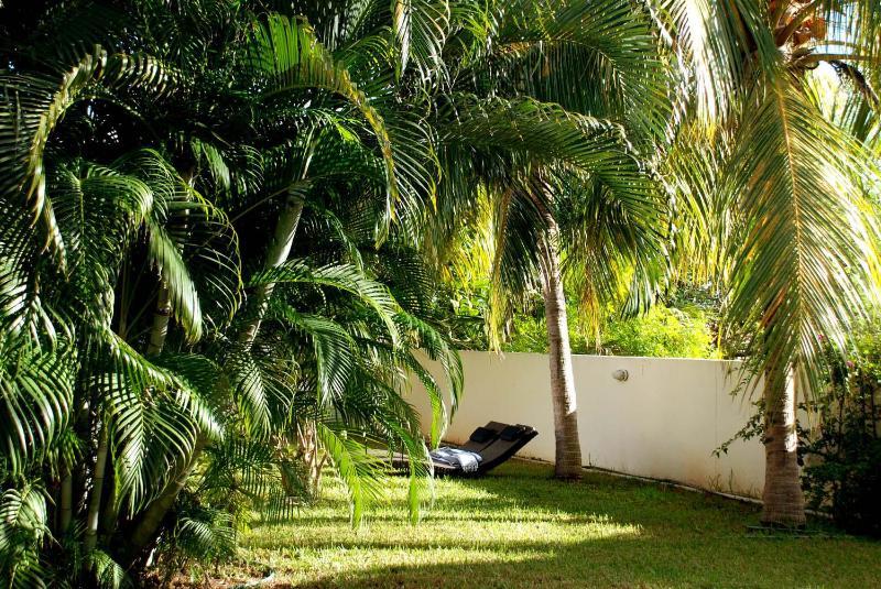 Jardin avec chaises longues