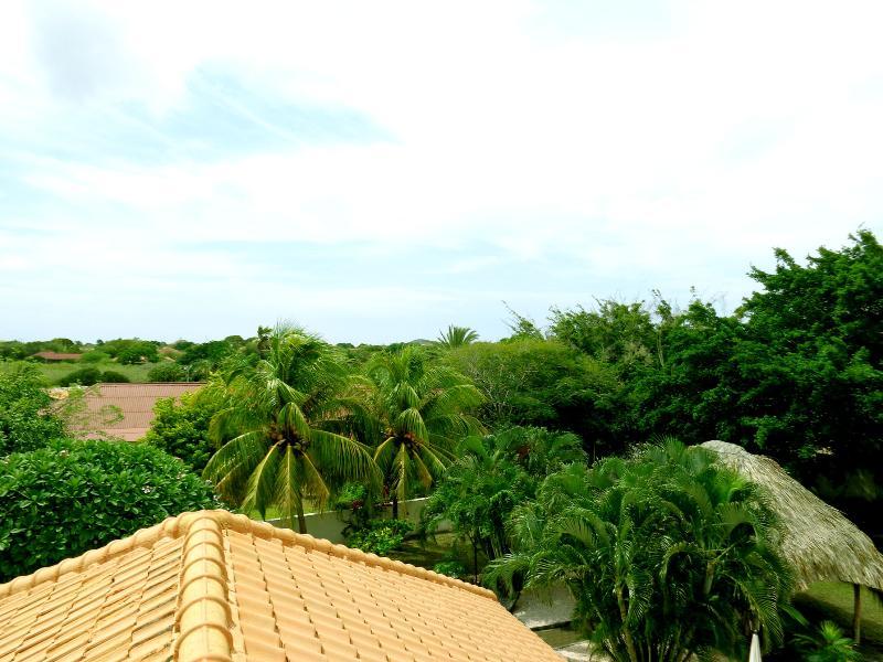 Back yard et ses environs vus du toit