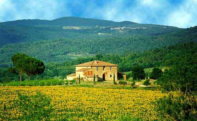 Tuscany Estate - Villa Grand Duc Italian Villa near the Chianti, Tuscany, vacation rental in Montebenichi