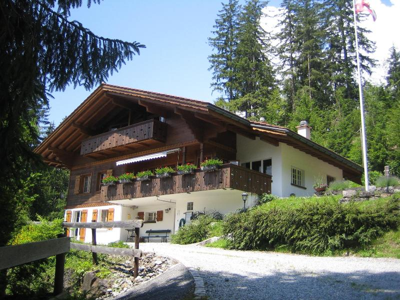 Chalet Ave, 2 flats (sleeps 9 and 4 persons), vacation rental in Bernese Oberland