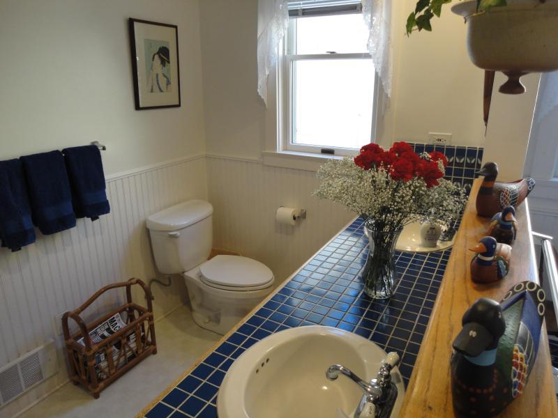 Salle de bains en bas