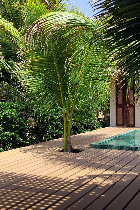 Sun deck and plunge pool