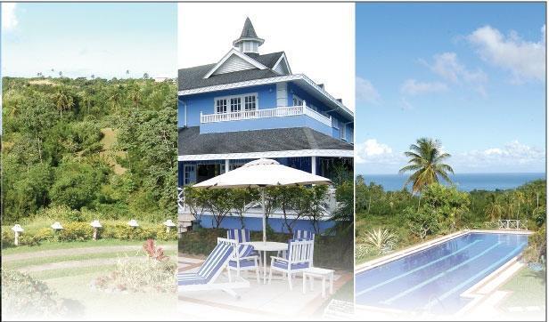 Villa, pool & gardens
