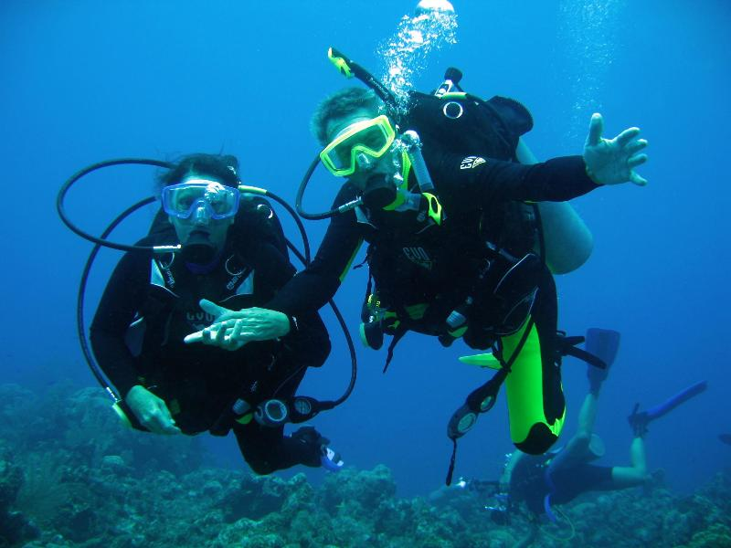 Welcome to the best diving in North America!