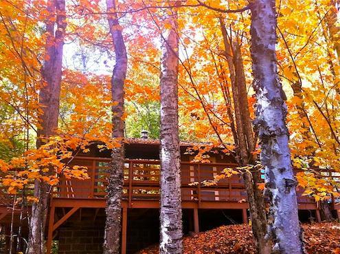 Parte anteriore della cabina in autunno