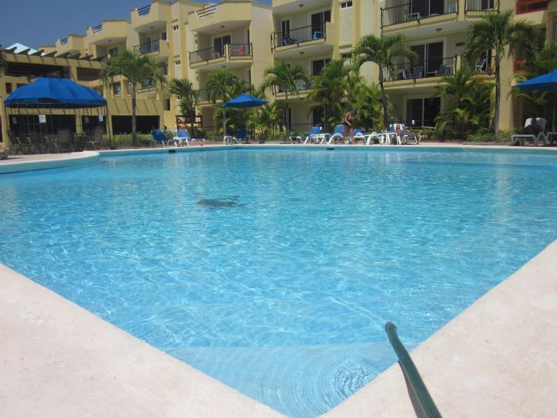 Gran piscina grande para hacerte sentir en el paraíso, y siempre bastante
