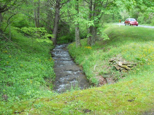 View of trout stream on property