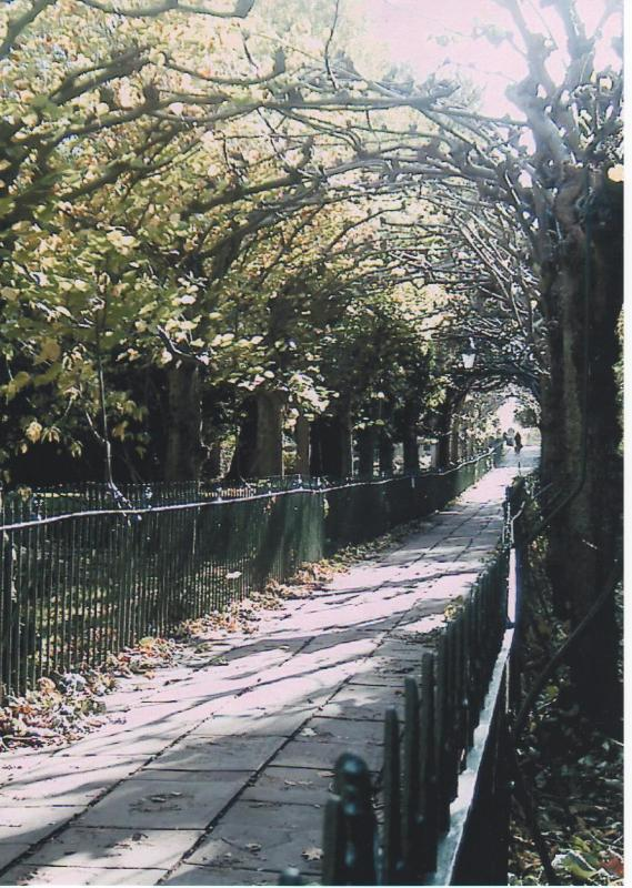 Birdcage Walk Clifton Hill