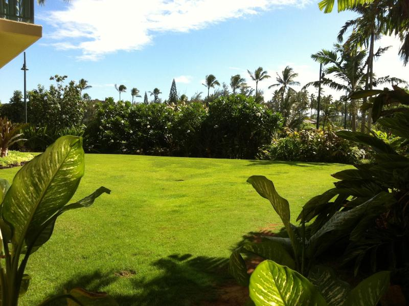 Grass park right outside Nani Moku is perfect for children