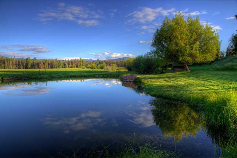 Fishable Pond