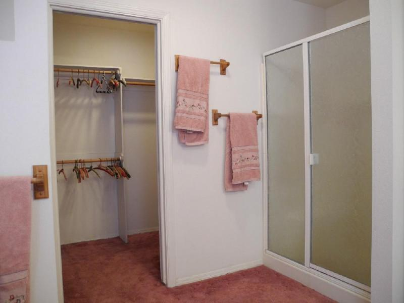Master Shower and Walk-in Closet
