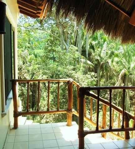 You can see how the CASITA is located right in the midst of the jungle, with birds, flowers, animals