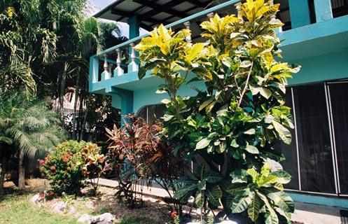 Ornamental tropical garden best in the region