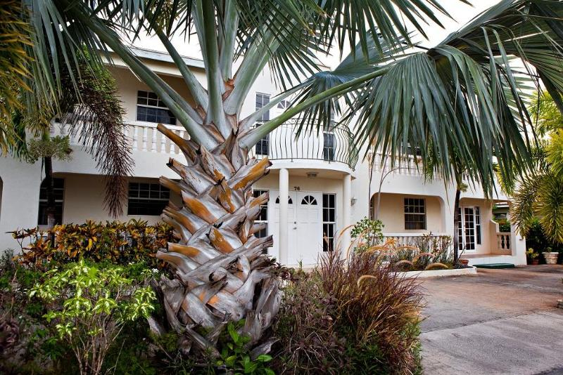A bismarck palm sits majestically at the front of the property.